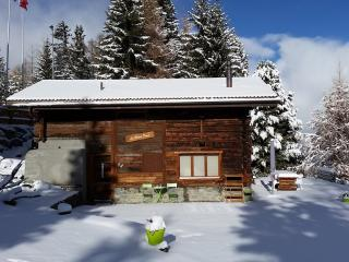 3 bedroom Chalet with Dishwasher in Les Collons - Les Collons vacation rentals