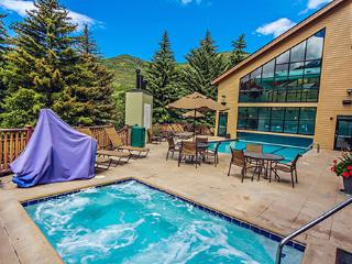 1BR Condo at Cedar at Streamside Vail - Vail vacation rentals