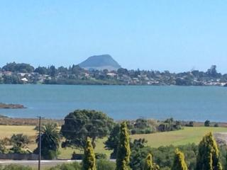Sunny Condo with Television and Water Views - Tauranga vacation rentals