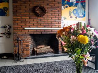 Great Chapultepec Apartment, Location Location!!! - Guadalajara vacation rentals