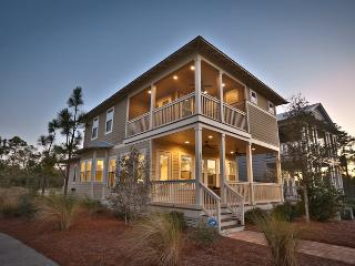 Perfect House with Internet Access and Dishwasher - Santa Rosa Beach vacation rentals