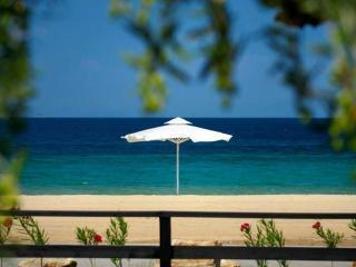 Maisonette in Nea Roda, Athos, ID: 3574 - Nea Roda vacation rentals
