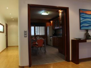 Nazare - 50 meters from the beach! FREE WIFI - Nazare vacation rentals