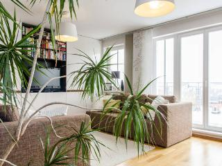 2BR aptmt / 25sqm terrace and breathtaking views - Prague vacation rentals
