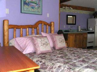 Private cabin for 2, close to town, view of bay - Homer vacation rentals