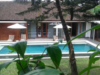 nature private 6 bedroom - Gianyar vacation rentals