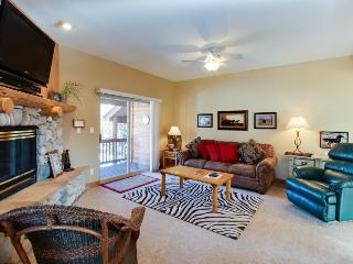 Townhome w/shared hot tub, fireplace & deck near resorts! - Dillon vacation rentals