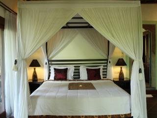 Umah Soca Villa - Ubud vacation rentals