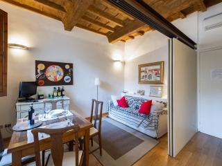 Lolly Charming 1 bedroom with balcony - Florence vacation rentals