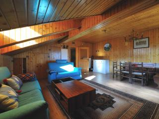 Nice House with Television and DVD Player - Zoppe di Cadore vacation rentals