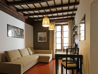 City Centre 2 bedroom apartment Ac/Wifi - Rome vacation rentals