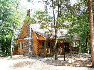 A Above The River Cabin - Shenandoah vacation rentals