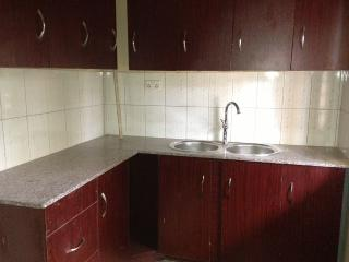 Andre Lovely home and Apartment for Holiday - Kampala vacation rentals