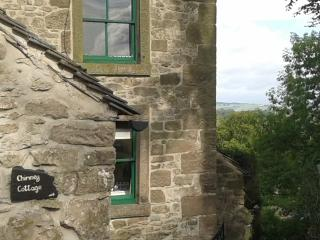 Charming 2 bedroom Cottage in Winster - Winster vacation rentals