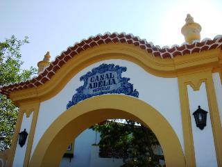 Casal Adelia, central Portugal! - Santarem vacation rentals