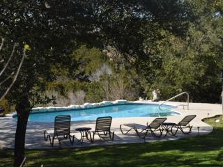 Beautiful, modern guest house w/ pool & hot tub! - Austin vacation rentals