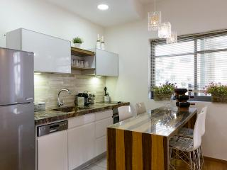 downtown 3 bd in dozingof. balcony and parking - Jaffa vacation rentals