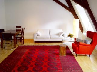 Cosy and comfortable 2 bedrooms Old town - Heidelberg vacation rentals