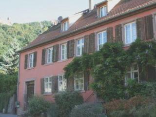 La Maison des Roses - Gite Elise - Ribeauville vacation rentals