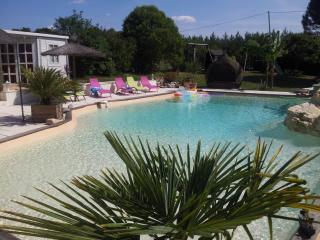 Grand gîte avec piscine 14x9 tennis, beach volley, - Castelmoron-sur-Lot vacation rentals