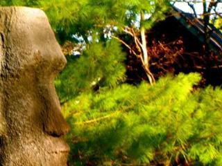 Otty Lake Artist Retreat - near Perth - Perth vacation rentals