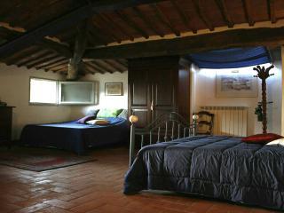 Casolare in campagna vicino Siena - Blue Bedroom - Orgia vacation rentals