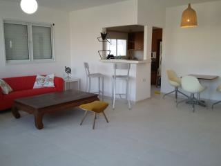 ROOF TOP DIZENGOFF - Tel Aviv vacation rentals