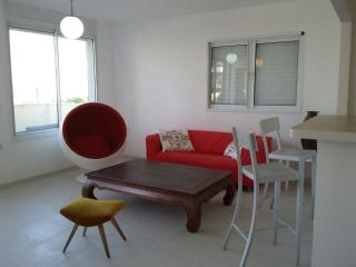 DIZENGOFF PENHOUSE 6 ROOMS - Tel Aviv vacation rentals