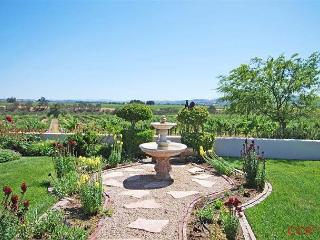 Gracious Elegance in Gorgeous Vineyard Setting - Paso Robles vacation rentals
