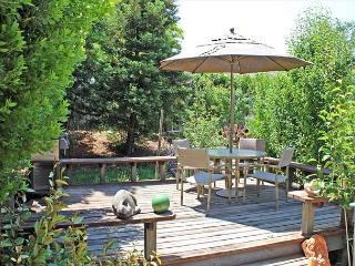 Elegant Ambiance with Playful Gardens, So Close to Downtown! - Paso Robles vacation rentals