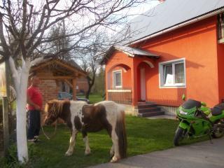 Matovina - Sertic Poljana vacation rentals
