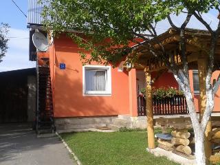 Romantic 1 bedroom Condo in Sertic Poljana - Sertic Poljana vacation rentals