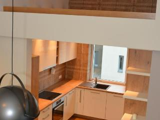 Nice apartment in Kaunas city - Kaunas vacation rentals