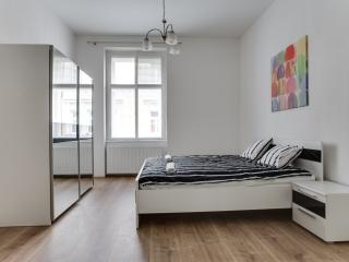 Romantic new apartment by the river in the center - Prague vacation rentals