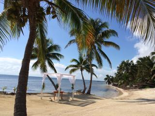 Tropical Seclusion & Beauty! - San Pedro vacation rentals