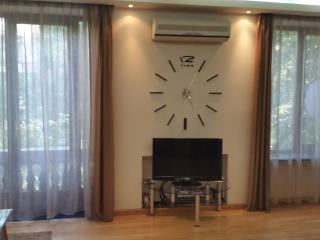furnished apartment  american style - Yerevan vacation rentals