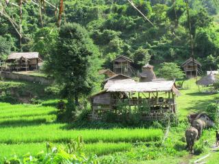 thai apache guest house, en jungle - Chiang Rai vacation rentals