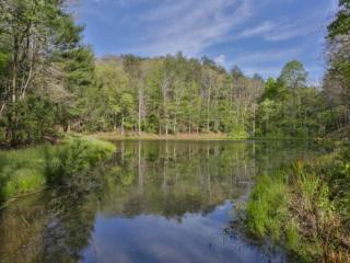 4 Bedroom Luxury North Georgia Rental Cabin On Stocked Pond - Ellijay vacation rentals
