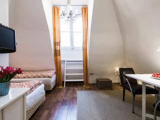 Fully independent apartment in center of Amsterdam - Amsterdam vacation rentals