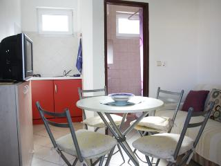 1 bedroom Apartment with Internet Access in Stara Novalja - Stara Novalja vacation rentals