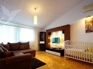 Casky 3 spacious apartment for 8 people - Novalja vacation rentals