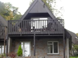 Alpine Lodge in St Ann's Chapel with shared pool - Callington vacation rentals
