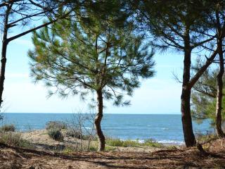 2 bedroom Condo with A/C in Agde - Agde vacation rentals