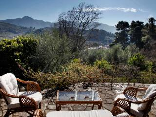 KRESTENA ESTATE NEAR ANCIENT OLYMPIA - Krestena vacation rentals