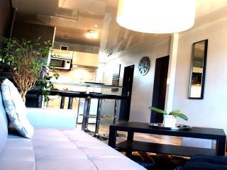 Design au Centre de Toulouse - Metro/Parking/WIFI - Toulouse vacation rentals