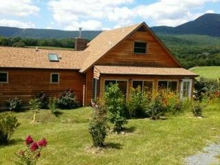 3 bedroom House with Deck in Luray - Luray vacation rentals