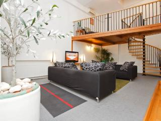 Great 4 bed city centre apartment with air con. - Prague vacation rentals
