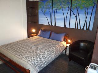 Cozy Temuco Studio rental with Housekeeping Included - Temuco vacation rentals