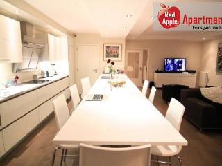 A Quiet Luxurious Apartment In An Upscale Neighborhood - 6619 - Brussels vacation rentals