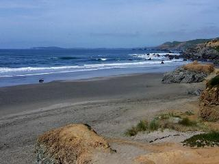 Adorable Bodega Bay Loft Cottage – Walk to the Beach! - Bodega Bay vacation rentals